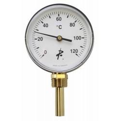 Termometro Caldera...