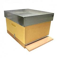 Camara cria abejas sin paneles